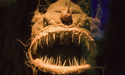 7 Most Terrifying and Bizarre Sea Monsters that Actually Exist