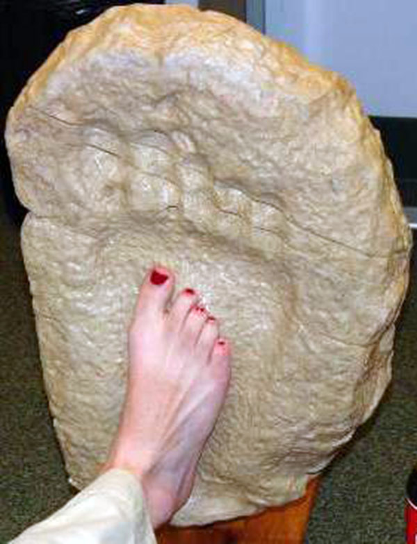 Jejak kaki raksasa