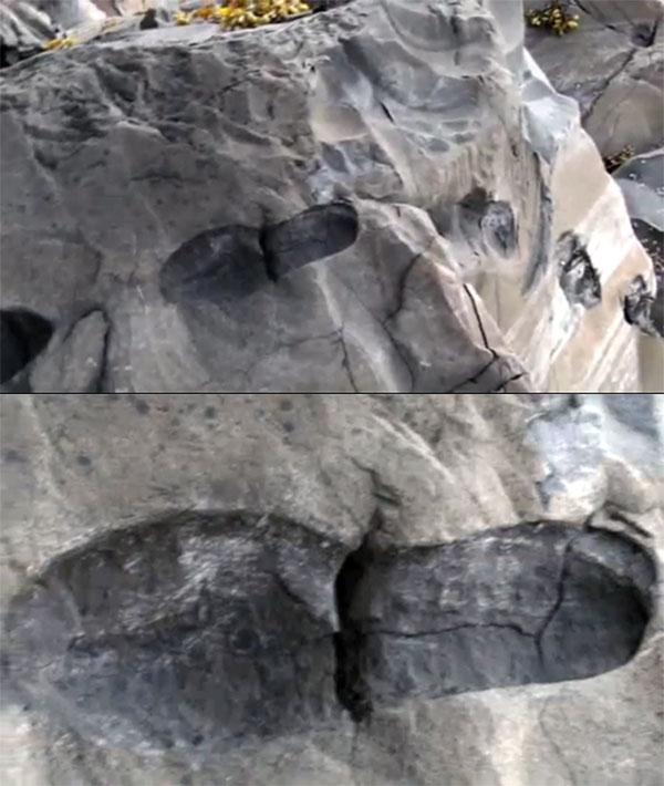 footprint-16