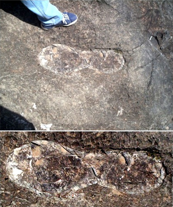footprint-20