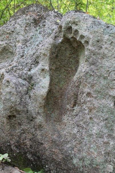 footprint-23